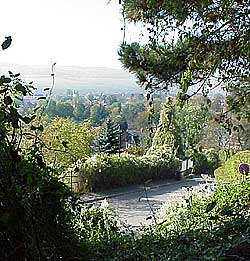 view into the valley from the wild garden